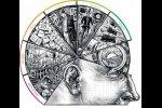 Значение кратковременной памяти и вездесущая семерка