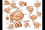 Зависимость долговременной памяти  от стимулов - средств запоминания